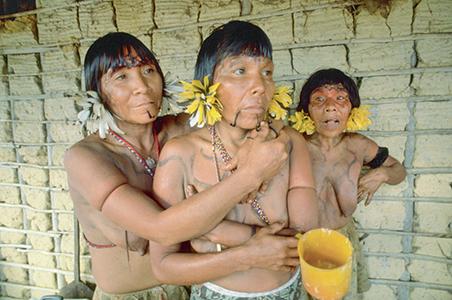 Le sang des Yanomami