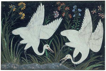 Deux grues au bord d'un étang, peinture du xviie siècle, Inde, Empire moghol© RMN-Grand Palais (musée Guimet, Paris) / Daniel Arnaudet