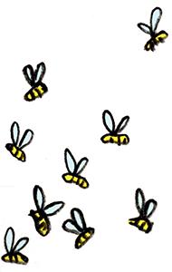 «L'abeille récolte et féconde»