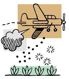 Pesticides le cadeau empoisonné