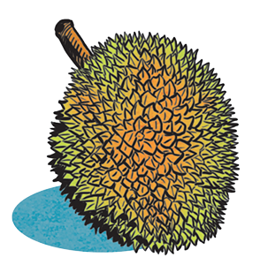 Le durian