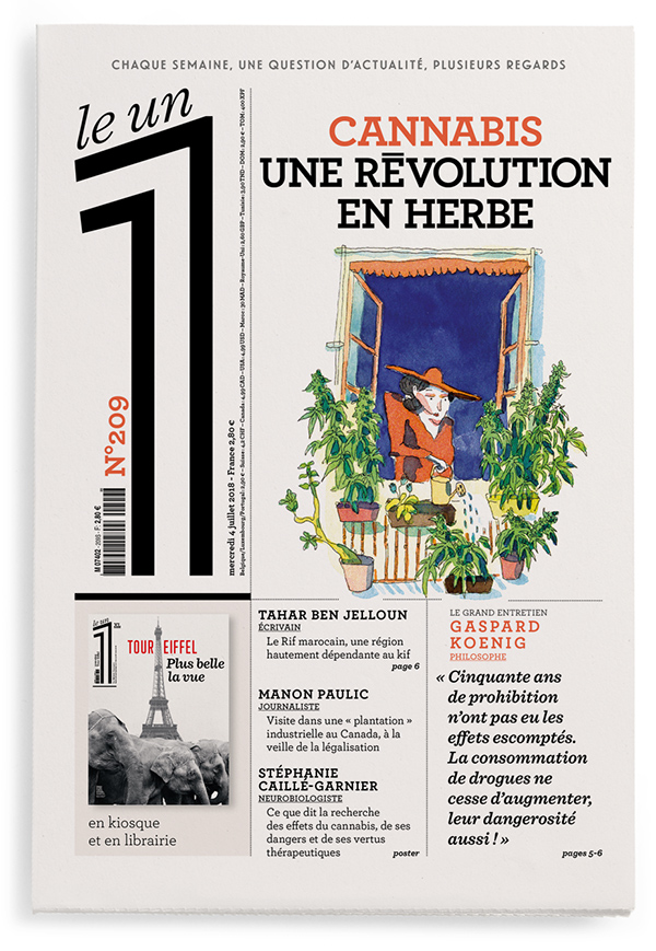 Cannabis : une révolution en herbe