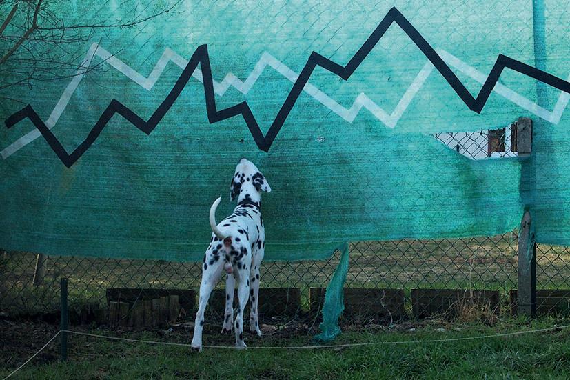 Graphique de crise, Saint-Leud'Esserent, février 2012 ©P.Lopparelli/ Tendance Floue