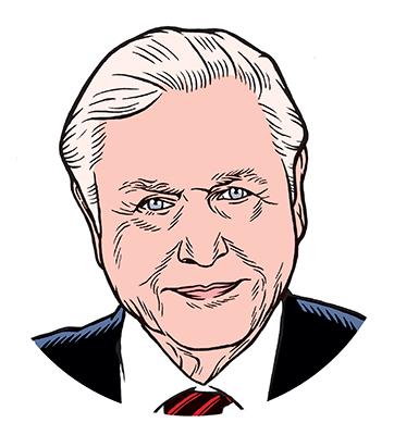 les auteurs du 1 : David Attenborough